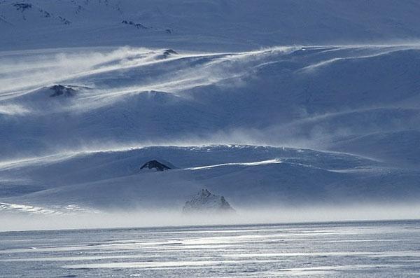 Яркий мир скрытый под арктическим льдом (11 фото)