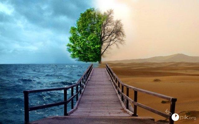 Закон приводящий пейзажи в движение